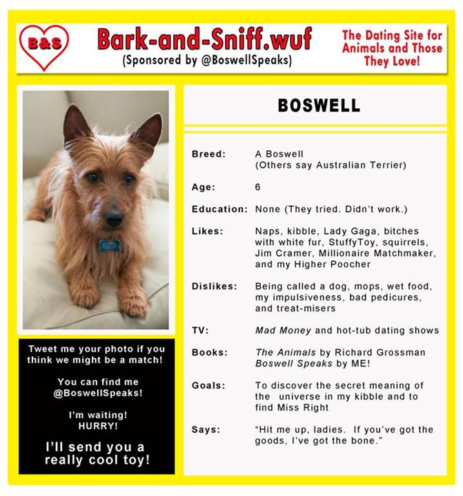 Boswell Dating 2e Medium Custom1 Contest for You & Your Pet @BoswellSpeaks